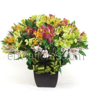Bouquet de 40 Alstroemerias de Colores y Follaje en Base