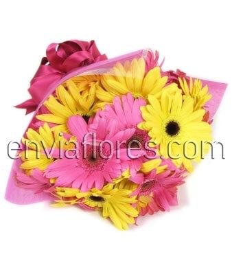 20 Felices Gerberas en Bouquet