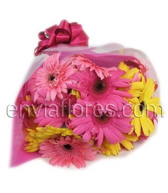 30 Felices Gerberas en Bouquet