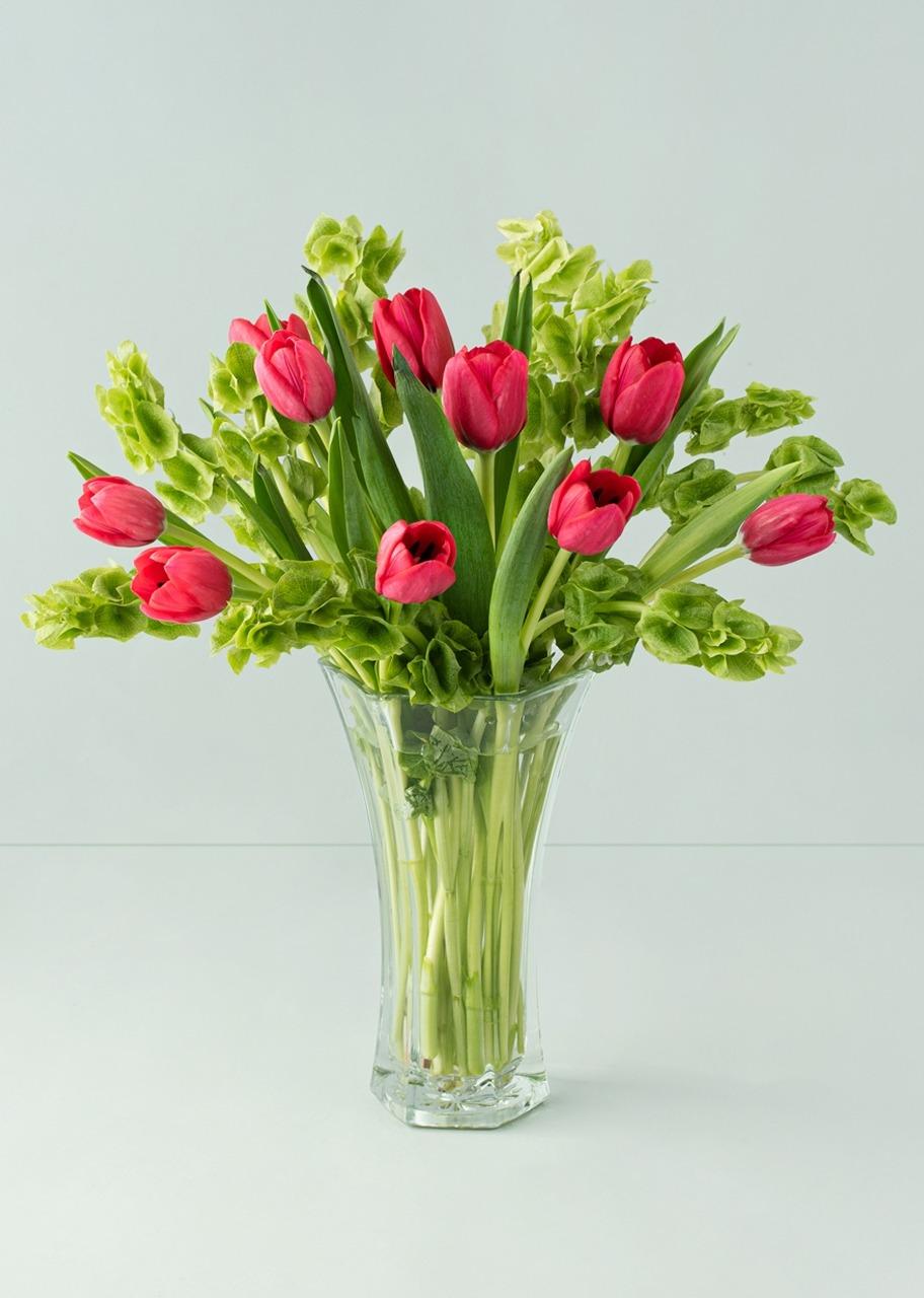 Imagen para 10 Tulipanes rojos en jarrón transparente - 1