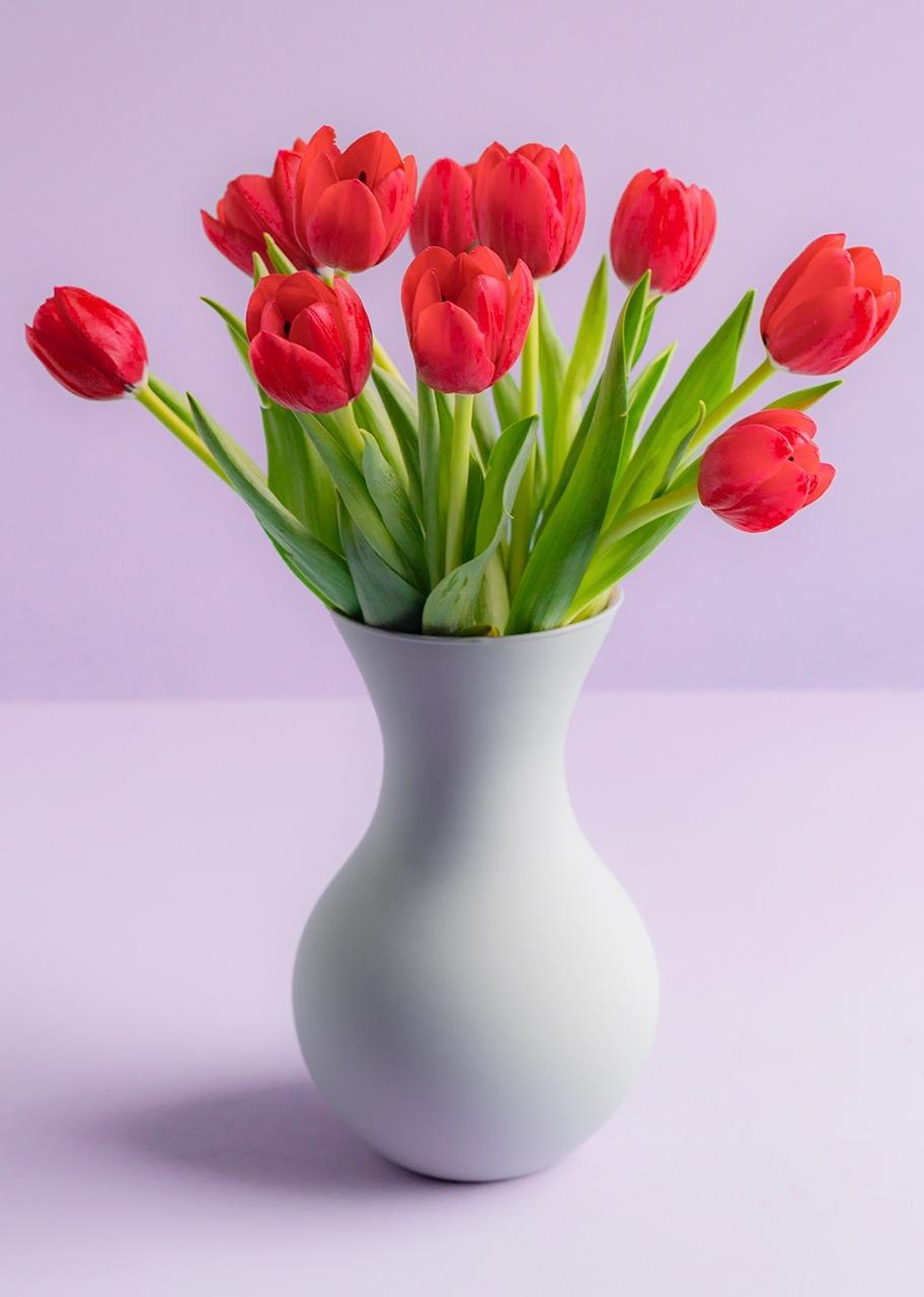 Imagen para 10 Tulipanes rojos en jarrón - 1