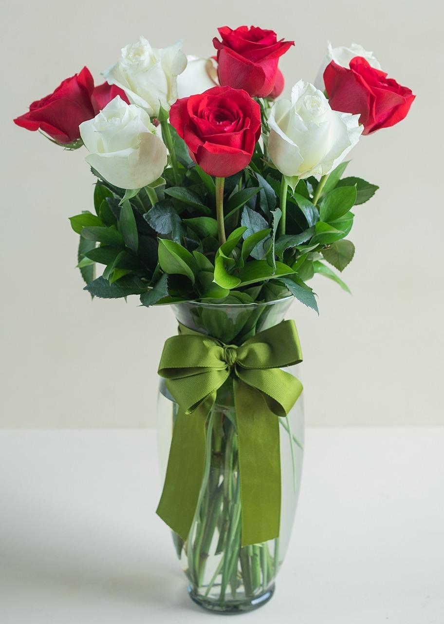 Imagen para 12 Rosas Radiantes - 1