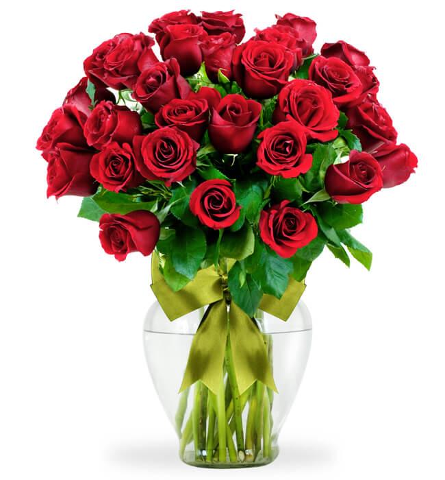 Imagen para 36 Rosas Rojas - 1