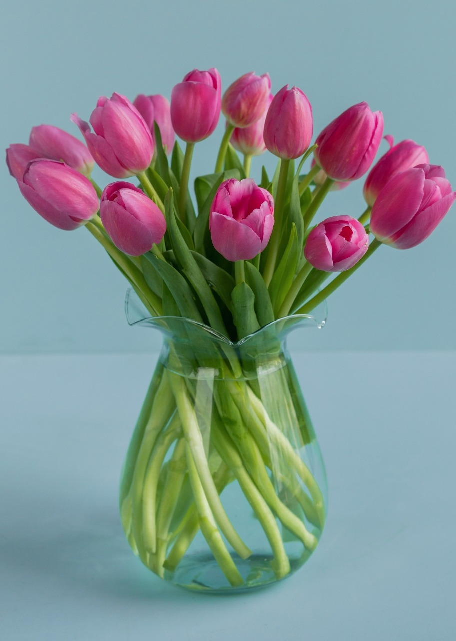 Imagen para 15 Pink Tulips in Vase - 1