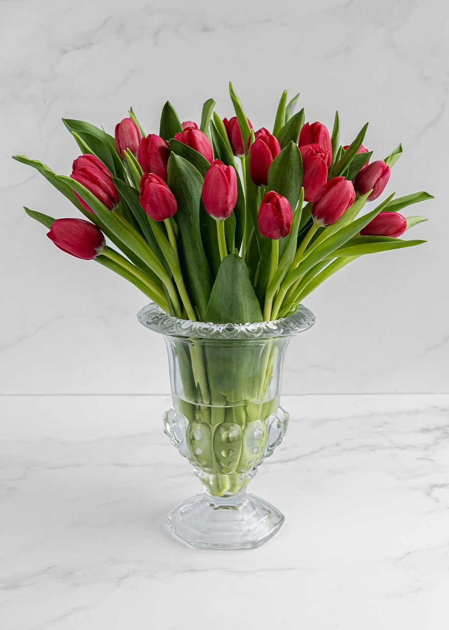 Imagen para 20 tulipanes rojos en copa - 1
