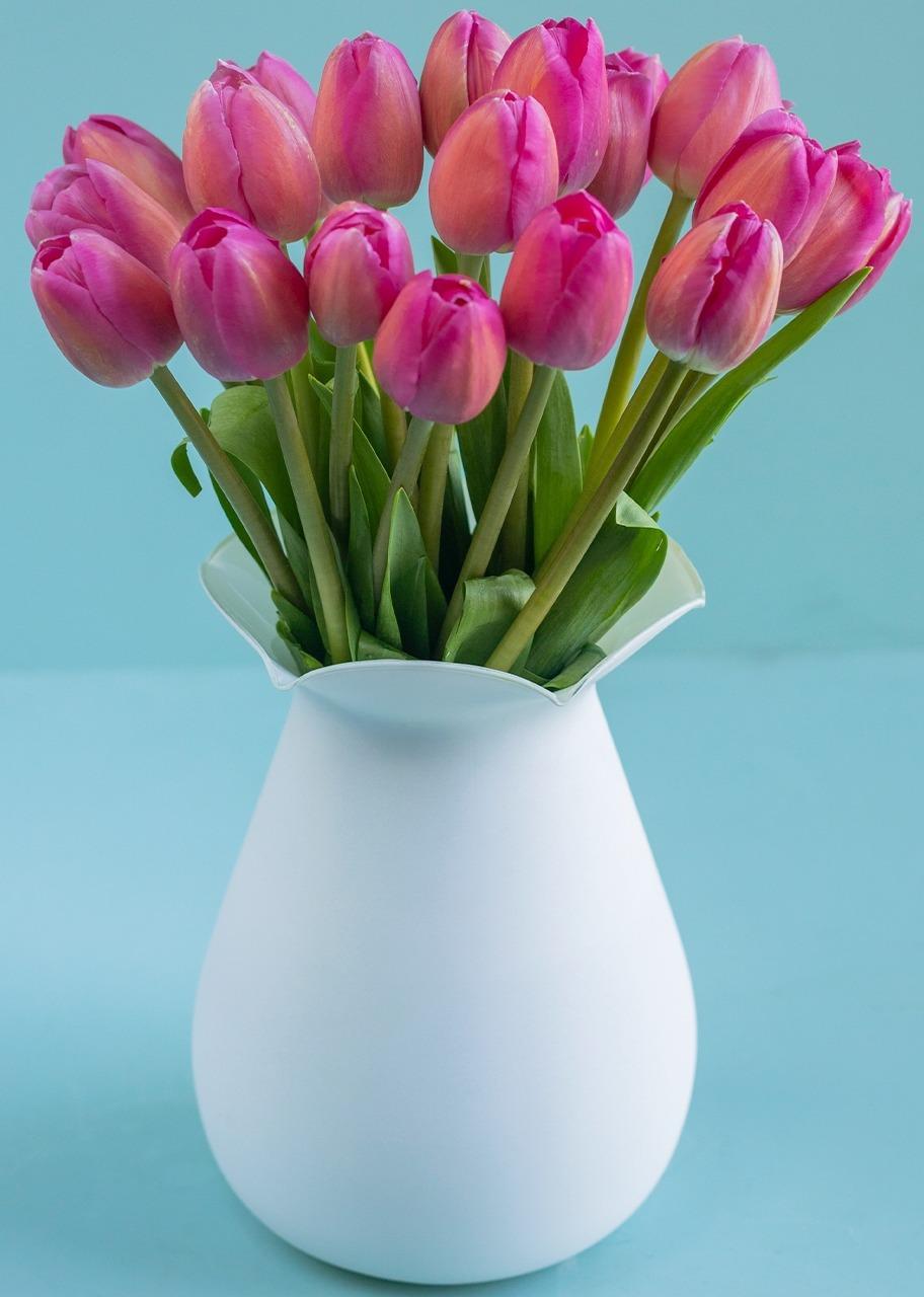 Imagen para 20 Tulipanes Rosas  en jarrón Blanco - 1