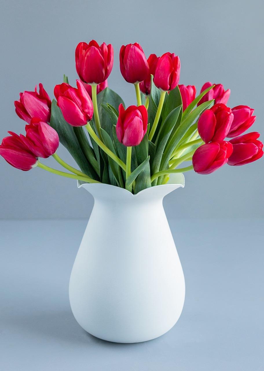 Imagen para 20 Tulipanes rojos en jarrón Blanco - 1