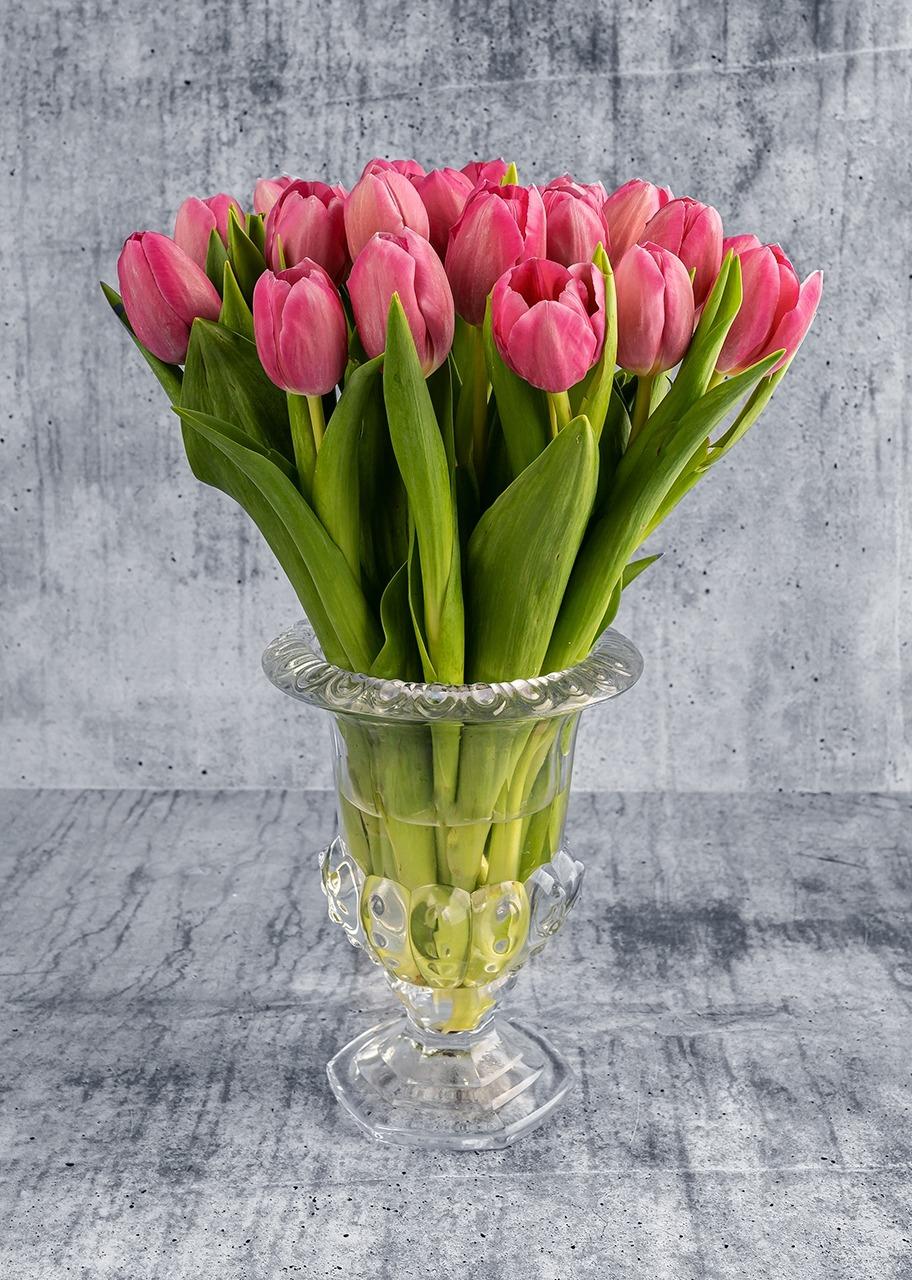 Imagen para 20 tulipanes rosas en copa - 1