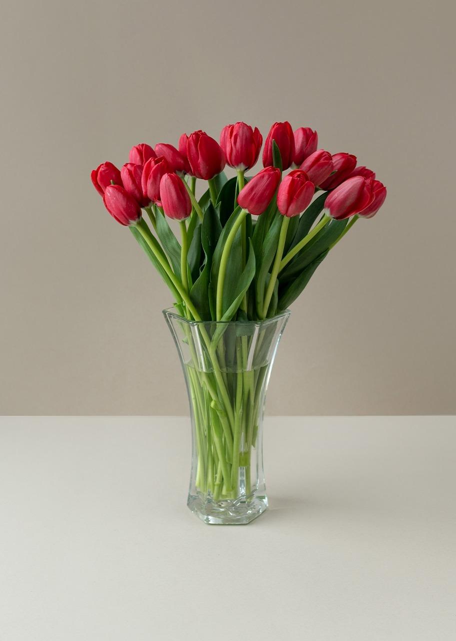 Imagen para 20 tulipanes rojos en jarrón transparente - 1
