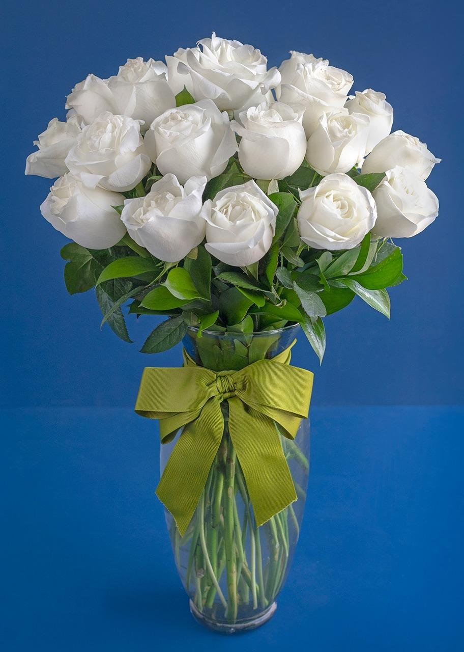 Imagen para 24 Rosas Blancas - 1