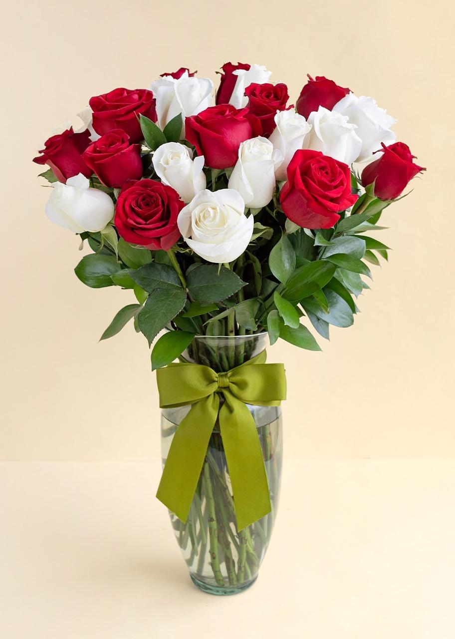Imagen para 24 Rosas Radiantes - 1