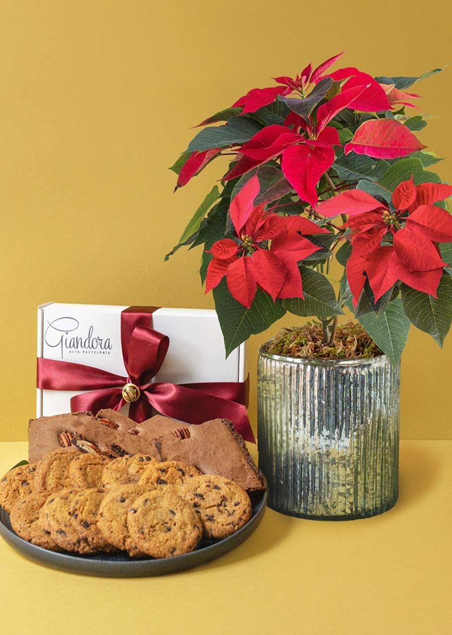 Imagen para Caja de Chocochips y Brownies con Nochebuena - 1