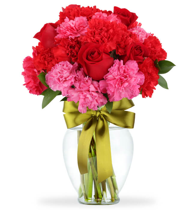 Imagen para 6 Red Roses and Carnations in a Vase - 1