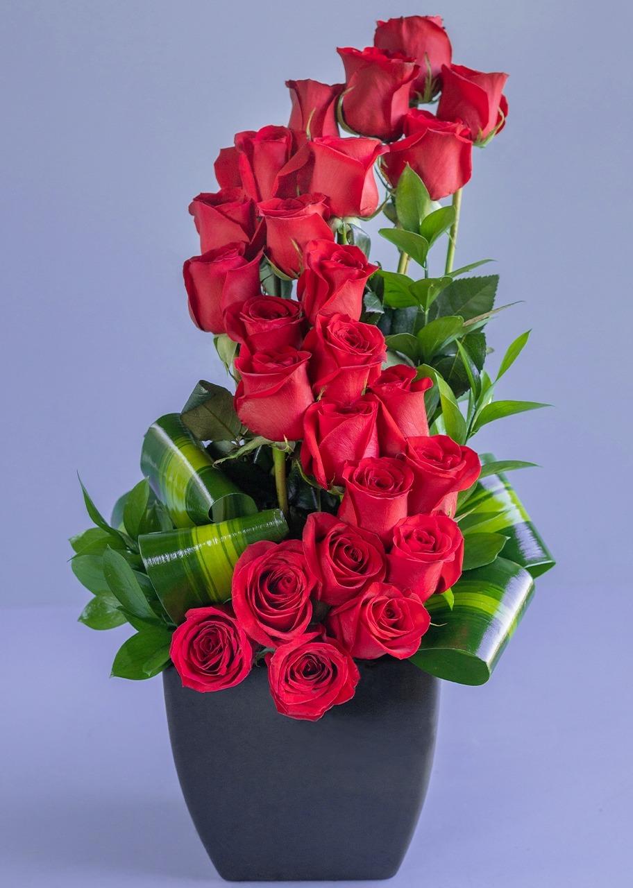 Imagen para Amor Infinito con 24 Rosas Rojas - 1