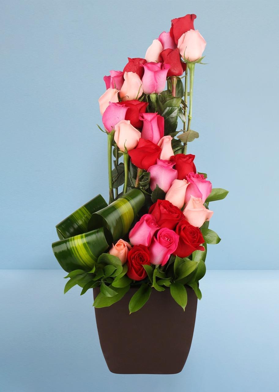 Imagen para Amor Infinito con 24 Rosas Románticas - 1