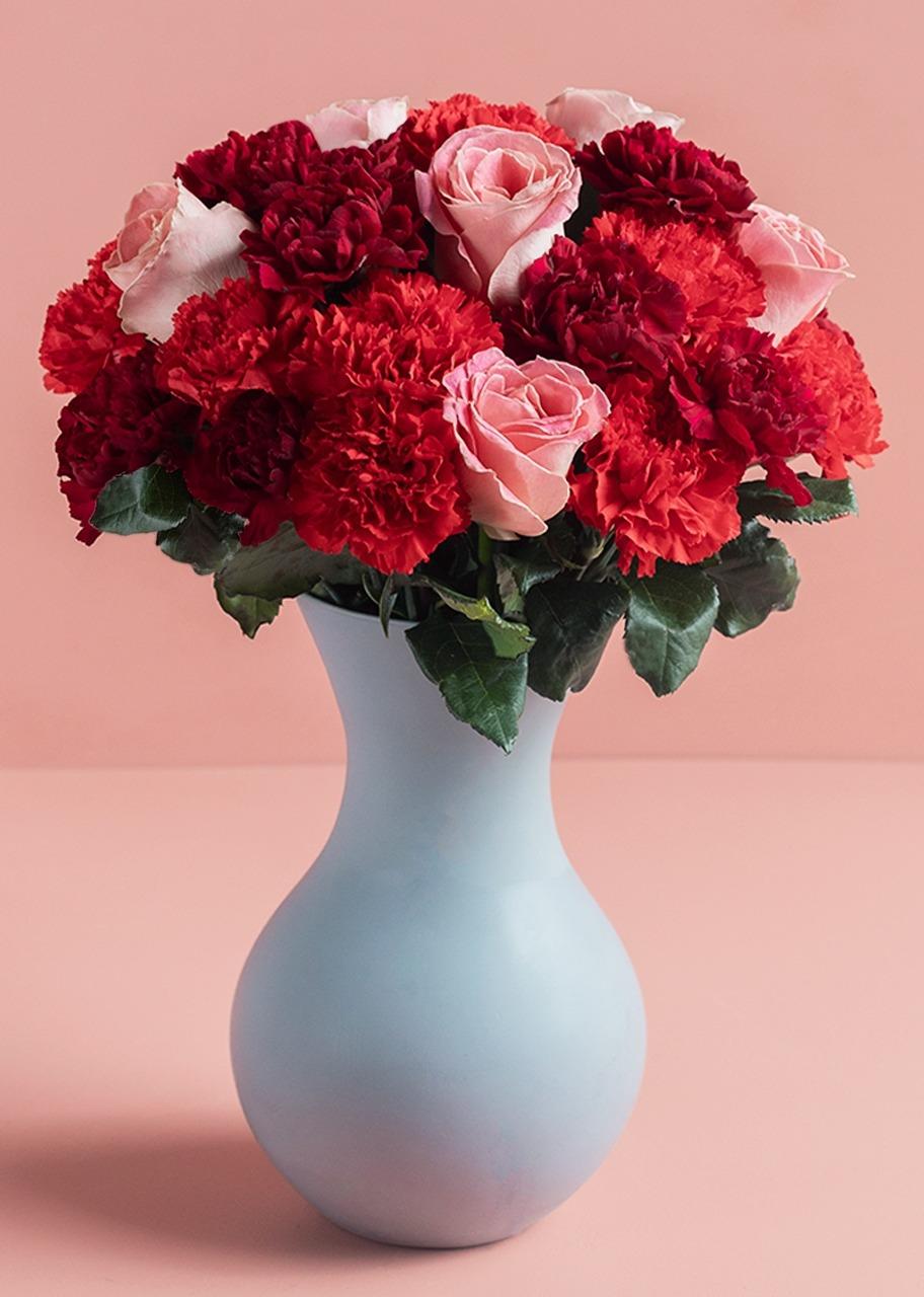 Imagen para Amor de Rosas y Claveles en Jarrón - 1