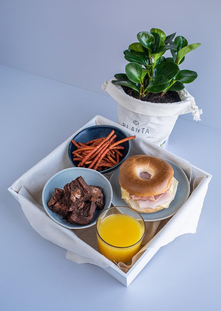Imagen para Desayuno Botánico - 1