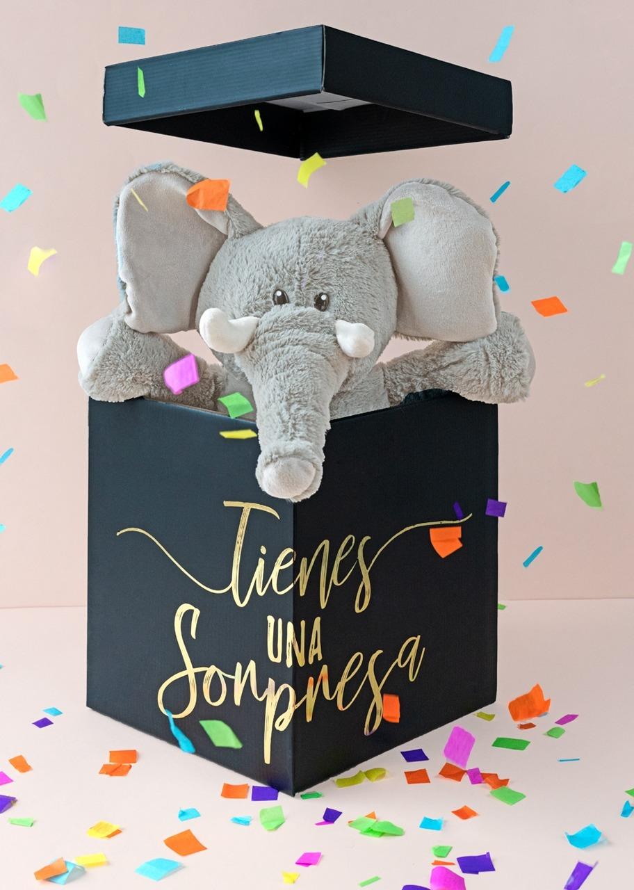 Imagen para Elefante de Peluche en Caja Sorpresa - 1