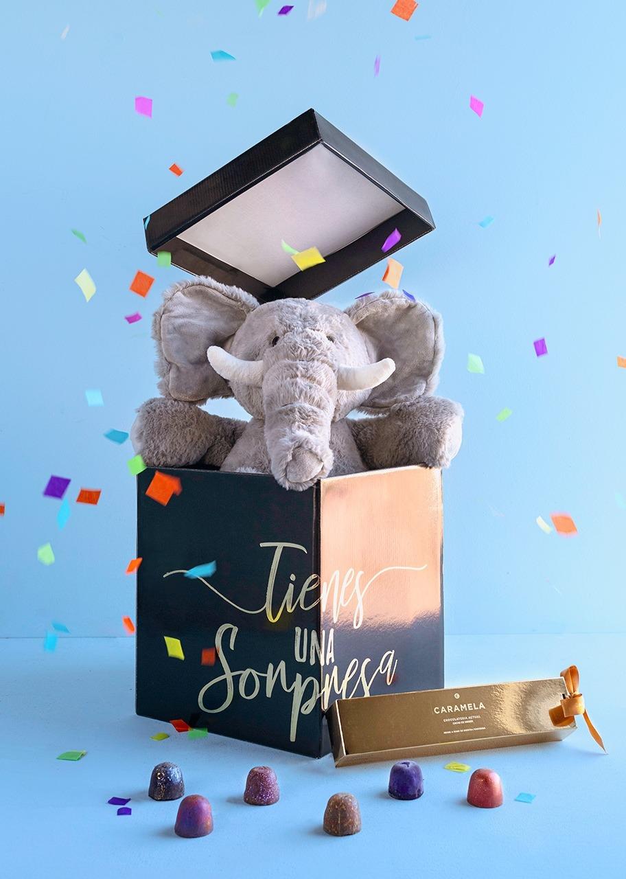 Imagen para Elephant Stuffed Animal in Surprise Box with Caramela - 1