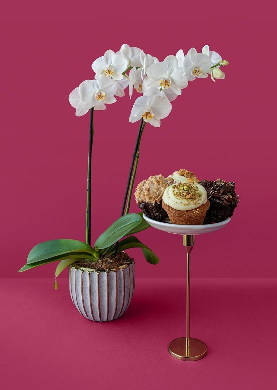 Imagen para Muffins 4 pz con Orquidea - 1