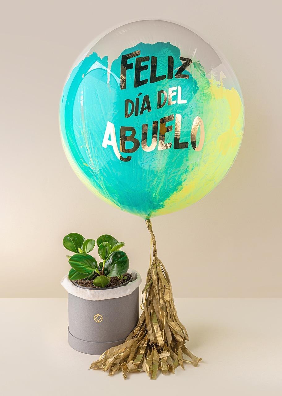 """Imagen para Planta Peperomia y Globo """"Feliz Día del Abuelo"""" - 1"""