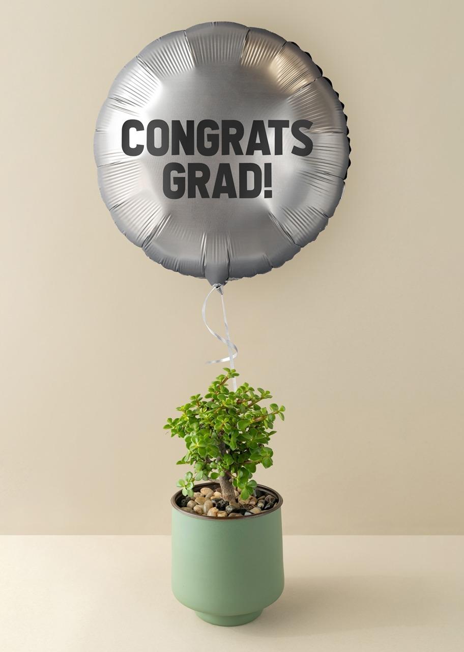 """Imagen para Árbol de la abundancia con Globo plateado """"Congrats Grad!"""" - 1"""