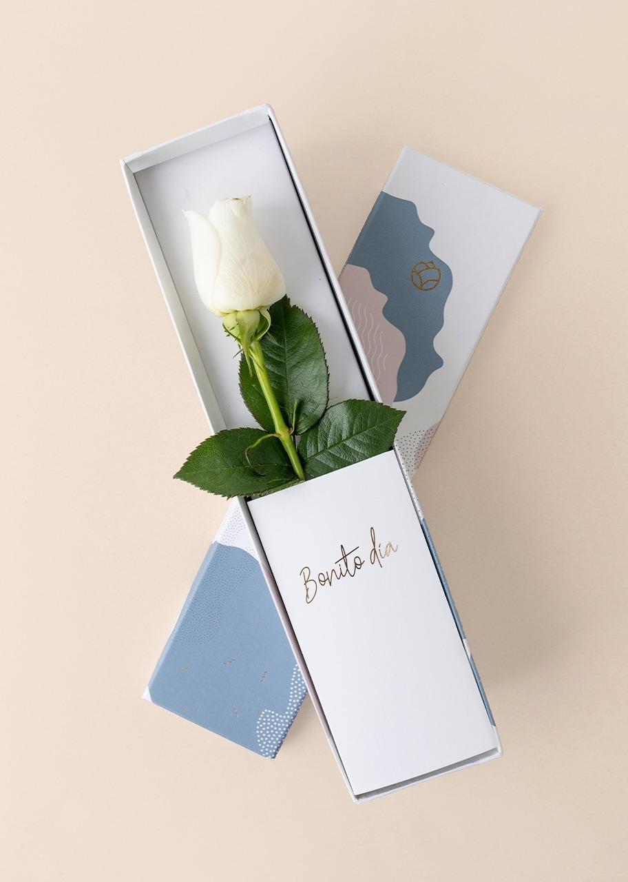 Imagen para Rosa blanca en caja julieta - 1