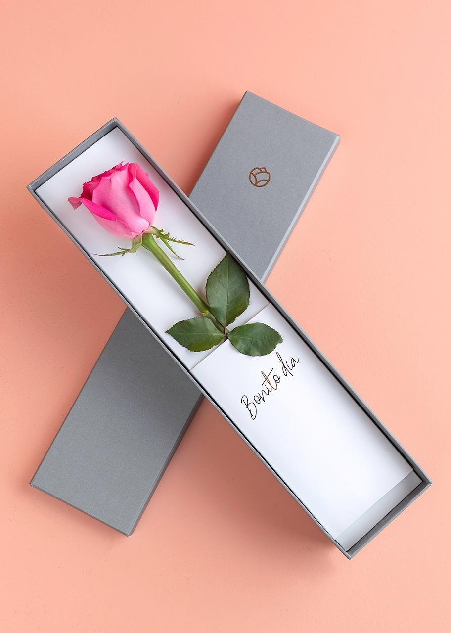 Imagen para Rosa Hermosa rosa intenso en caja - 1