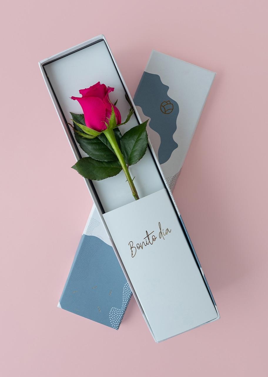 Imagen para Rosa rosa intenso en caja julieta - 1