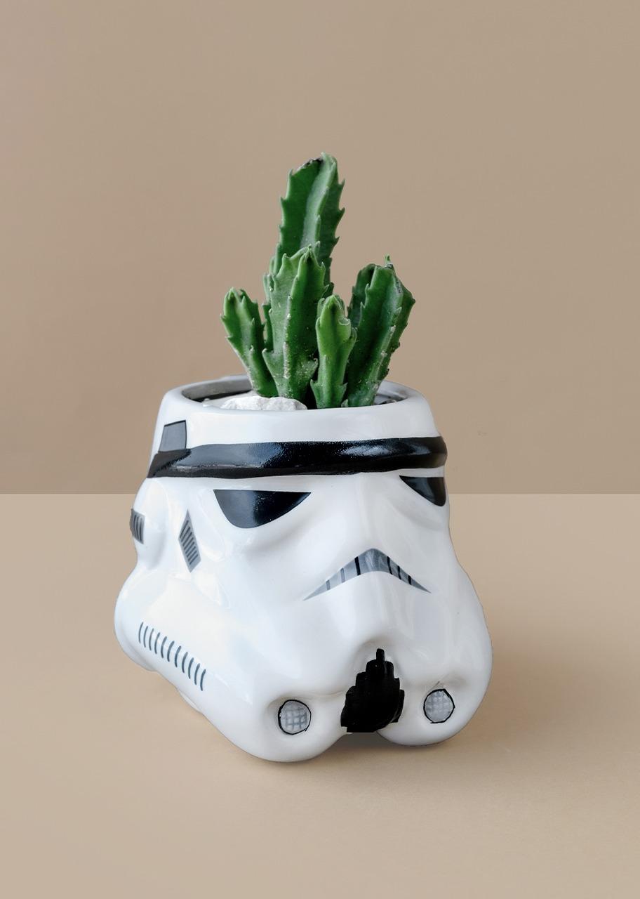 Imagen para Taza Stormtrooper con mini cactus - 1