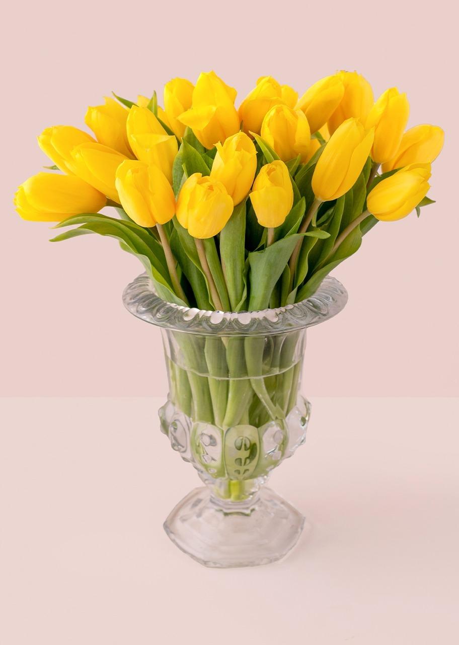 Imagen para 20 tulipanes amarillos en copa - 1