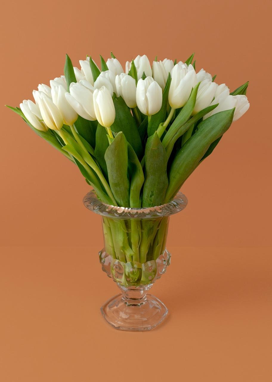 Imagen para 20 tulipanes blancos en copa - 1