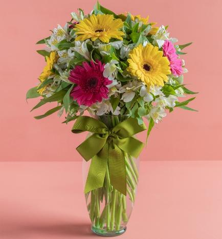 Multi colored Gerbera Daisies