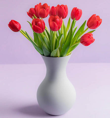 My Love with 10 Red Tulips